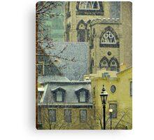 Spring Snow??? © Canvas Print