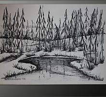STREAM SPIRIT - meandering brook by BSherdahl