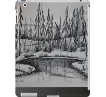 STREAM SPIRIT - meandering brook iPad Case/Skin