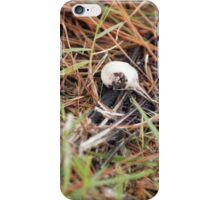 Bird Bones iPhone Case/Skin