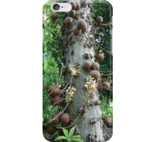 Cannon tree iPhone Case/Skin