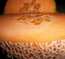 Cool Cantaloupe by ArtBee