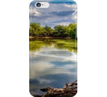 Colorful Pond iPhone Case/Skin