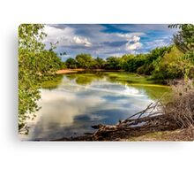 Colorful Pond Canvas Print