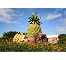 Fruit Monument Photographic Print