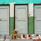 Valparaiso Doors by Chid Gilovitz