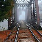 Makin Trax Through The Fog by Geno Rugh