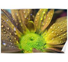 Green & Yellow Flower Poster