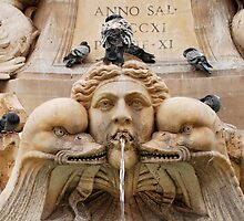 Pigeons on Pantheon Fountain by jojobob