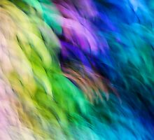 Colorful by amdiederich