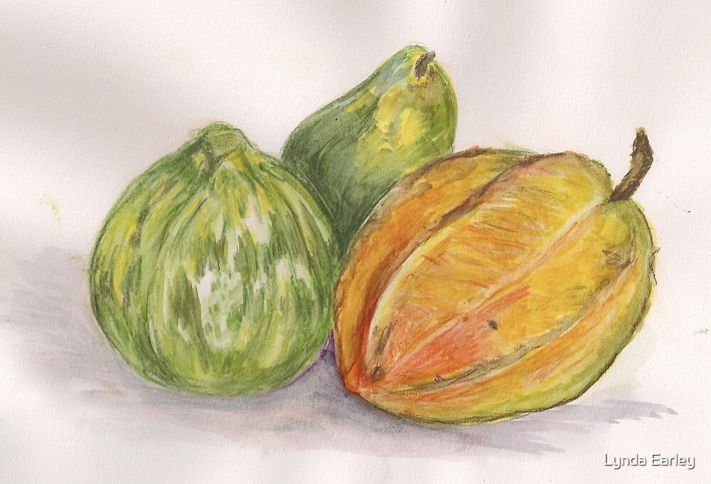 Lora Loka's Fruit and Vegetables by Lynda Earley