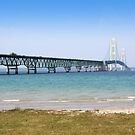 Lake shore of Mackinac by snehit