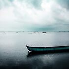 lonely boat by Surani Bandara