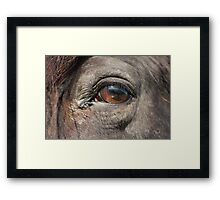 point of view 1 Framed Print