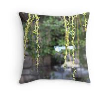 Blossoms Hanging in front of a Stone Wall Throw Pillow