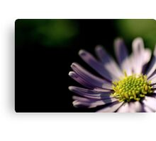 Just a flower.... (I don't know anything about them, but I like them) Canvas Print