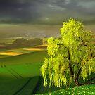 Green Beginning by Igor Zenin