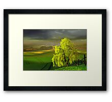 Green Beginning Framed Print