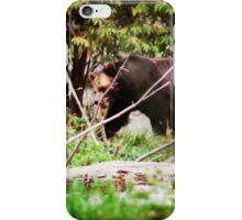 Black Bear Beauty iPhone Case/Skin