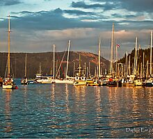 Evening Glow at Cowichan Bay BC by Daphne Eze