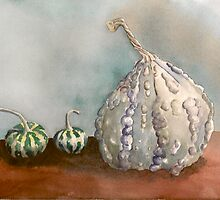 gourds by beachcomber02