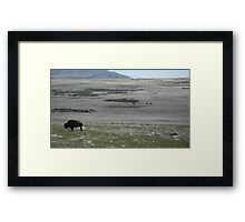 Buffalo Grazing with Horsemen Framed Print