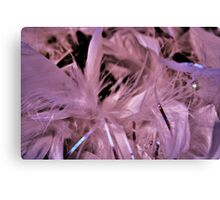 Feather bower Canvas Print