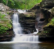 A New Summer Begins At Murray Reynolds Falls by Gene Walls