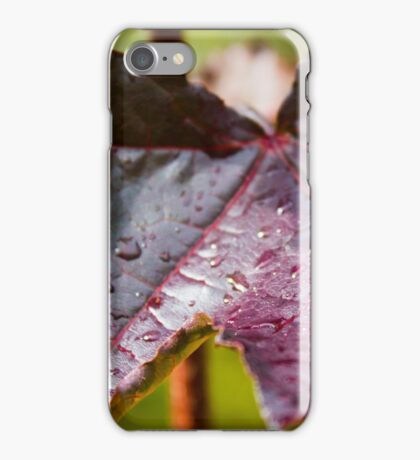 Purple Leaf with Water Droplets iPhone Case/Skin