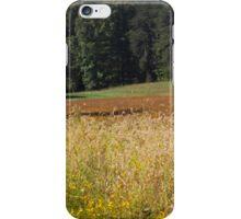 Pretty Red Barn iPhone Case/Skin