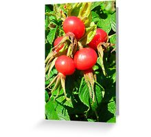 Fruit of the Bloom Greeting Card