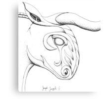 Stony Bull Canvas Print