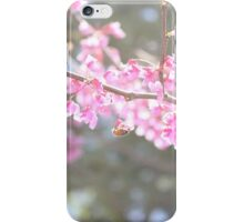 Blooms & Bees iPhone Case/Skin