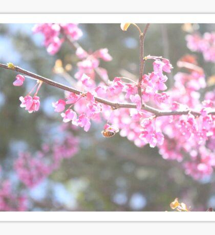 Blooms & Bees Sticker