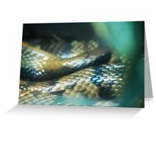 Snakey Scales Greeting Card