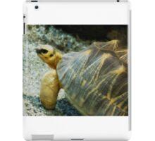 Horned Tortoise iPad Case/Skin