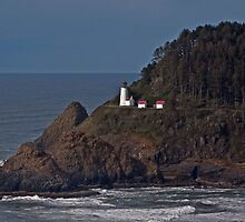 Heceta Head Lighthouse by LucyAbrao
