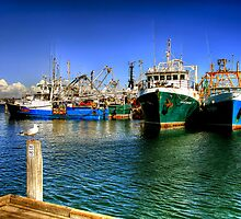 Fremantle Fishing Boat Harbour by Christine Smith