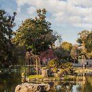 Jardin Japones, Buenos Aires  by Mathieu Longvert