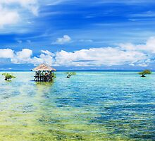 Tropical panorama by MotHaiBaPhoto Dmitry & Olga