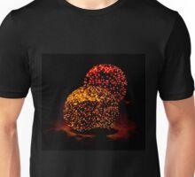 Snow Lights Unisex T-Shirt
