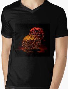 Snow Lights Mens V-Neck T-Shirt
