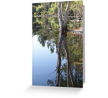 Refecting Trees Greeting Card