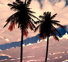 Palms on Fire by Peyton Duncan