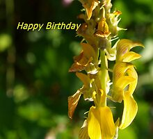 Snapdragon birthday greeting by ♥⊱ B. Randi Bailey