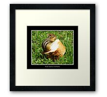Chipmunk saying grace before a meal Framed Print