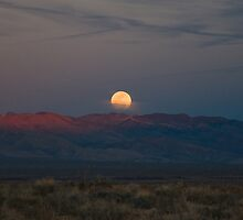 MOUNTAIN MOONSHINE by George Trimmer