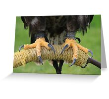 Eagle Talons Greeting Card