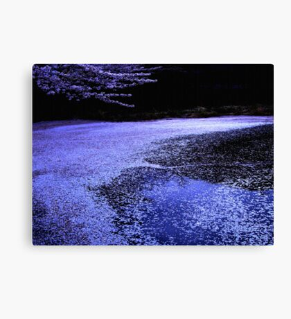 """sakura spirits""...... living on  Canvas Print"