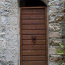 Sgurgola Door in Italy  2 by Warren. A. Williams